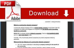 CIC Responsibilities pdf Document